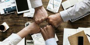 Mit tehet a cégvezető a jelenlegi helyzetben?